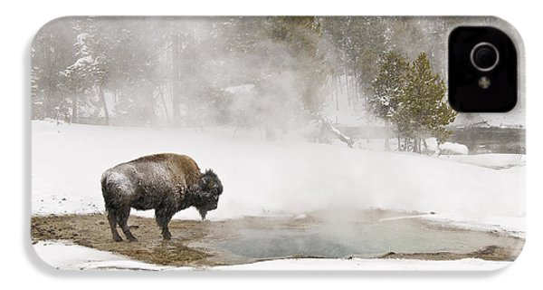 IPhone 4 Case featuring the photograph Bison Keeping Warm by Gary Lengyel