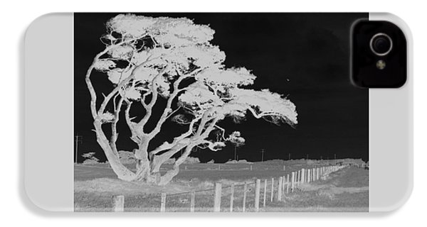 IPhone 4 Case featuring the photograph Lone Tree, West Coast by Nareeta Martin