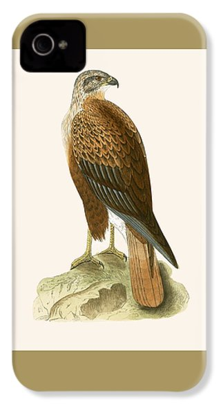Long Legged Buzzard IPhone 4 Case