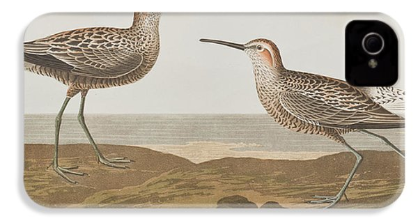 Long-legged Sandpiper IPhone 4 Case by John James Audubon