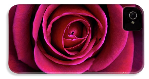 IPhone 4 Case featuring the photograph Love Is A Rose by Linda Lees