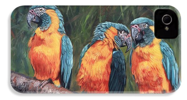 Macaws IPhone 4 Case by David Stribbling