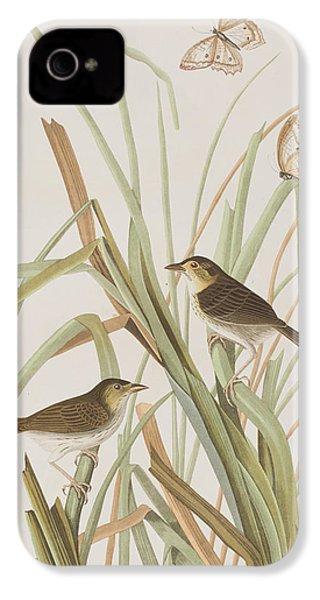 Macgillivray's Finch  IPhone 4 Case by John James Audubon