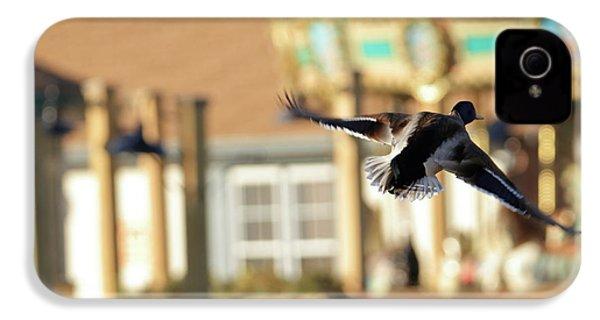 Mallard Duck And Carousel IPhone 4 / 4s Case by Geraldine Scull