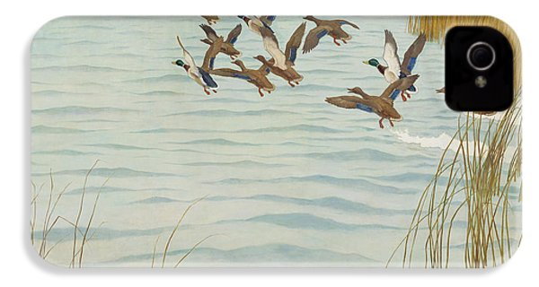 Mallards In Autumn IPhone 4 Case by Newell Convers Wyeth
