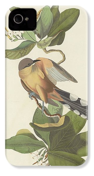 Mangrove Cuckoo IPhone 4 Case by Dreyer Wildlife Print Collections