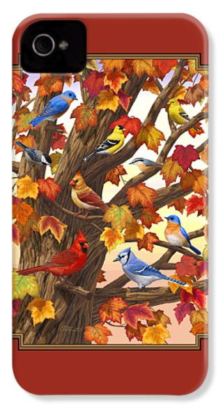 Maple Tree Marvel - Bird Painting IPhone 4 Case by Crista Forest