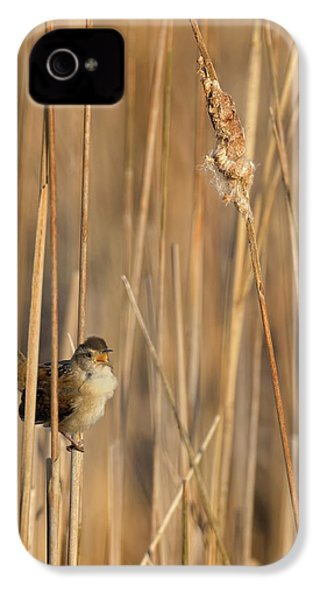 Marsh Wren IPhone 4 Case