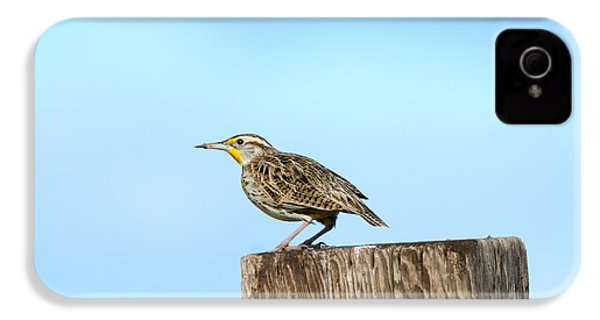 Meadowlark Roost IPhone 4 Case by Mike Dawson
