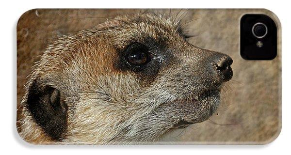 Meerkat 3 IPhone 4 Case by Ernie Echols
