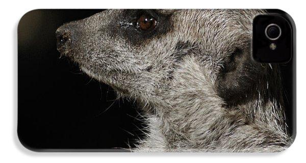 Meerkat Profile IPhone 4 Case by Ernie Echols