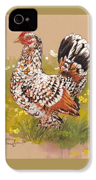 Miss Millie Fleur IPhone 4 Case by Tracie Thompson