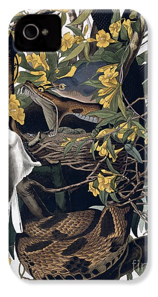 Mocking Birds And Rattlesnake IPhone 4 / 4s Case by John James Audubon