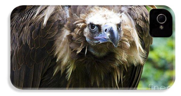Monk Vulture 3 IPhone 4 Case by Heiko Koehrer-Wagner