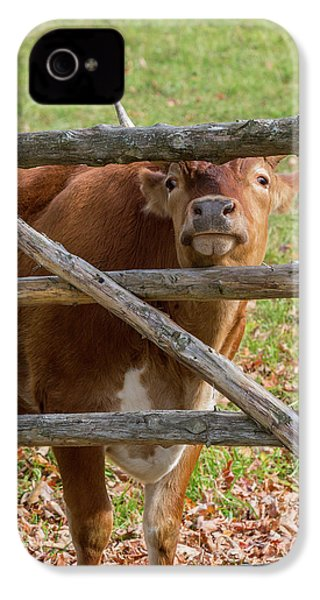 IPhone 4 Case featuring the photograph Moo by Bill Wakeley