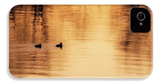 IPhone 4 Case featuring the photograph Morning Ducks 2017 Square by Bill Wakeley