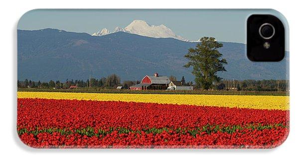Mount Baker Skagit Valley Tulip Festival Barn IPhone 4 / 4s Case by Mike Reid