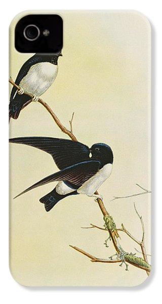 Nepal House Martin IPhone 4 Case by John Gould