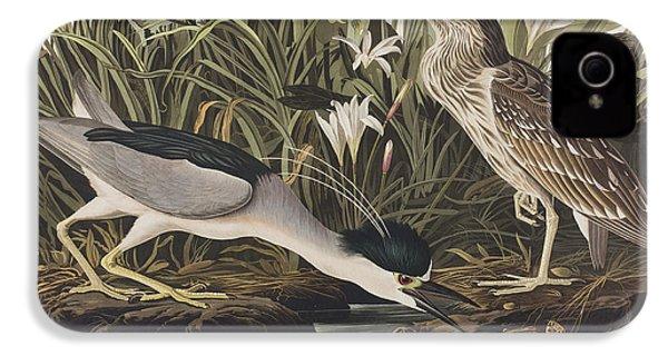 Night Heron Or Qua Bird IPhone 4 Case by John James Audubon