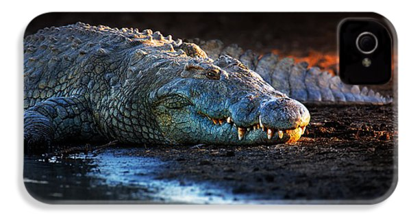 Nile Crocodile On Riverbank-1 IPhone 4 Case by Johan Swanepoel