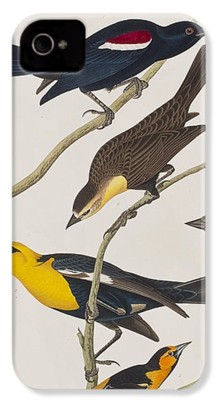 Nuttall's Starling Yellow-headed Troopial Bullock's Oriole IPhone 4 Case by John James Audubon