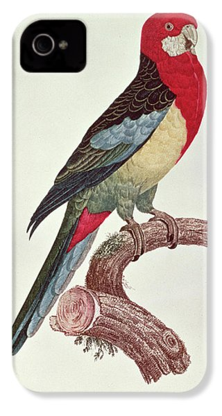 Omnicolored Parakeet IPhone 4 Case by Jacques Barraband
