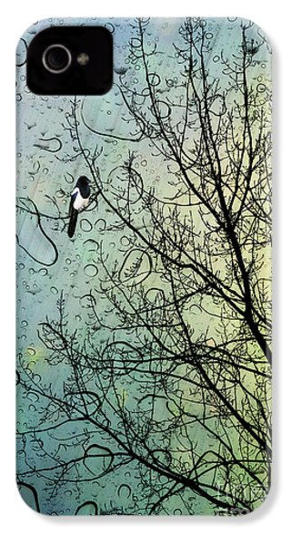 One For Sorrow IPhone 4 / 4s Case by John Edwards