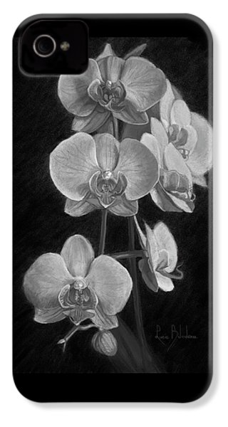 Orchids - Black And White IPhone 4 Case by Lucie Bilodeau