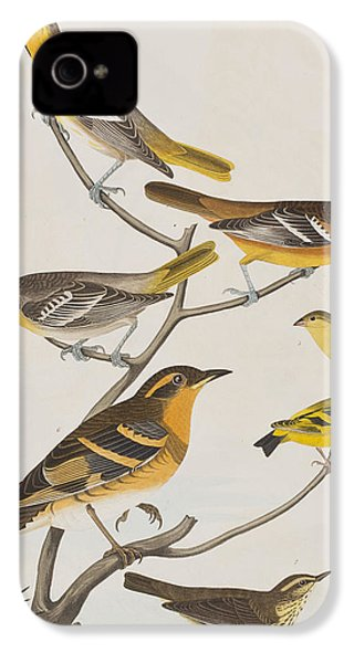 Orioles Thrushes And Goldfinches IPhone 4 Case by John James Audubon
