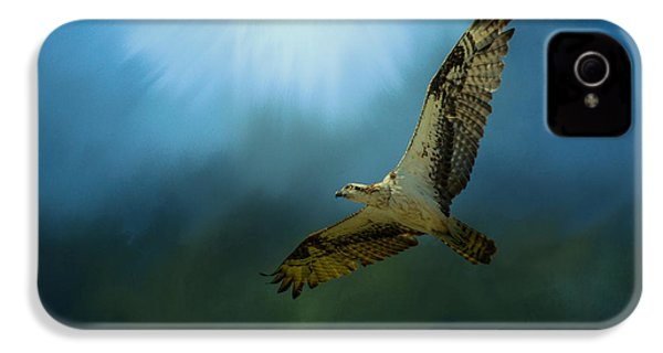 Osprey In The Evening Light IPhone 4 Case