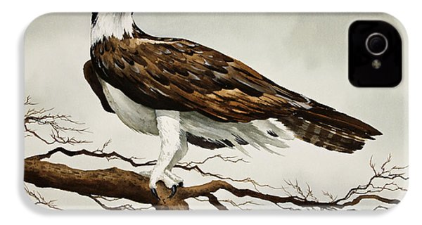 Osprey Sea Hawk IPhone 4 / 4s Case by James Williamson