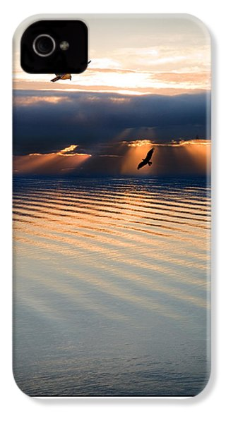 Ospreys IPhone 4 / 4s Case by Mal Bray