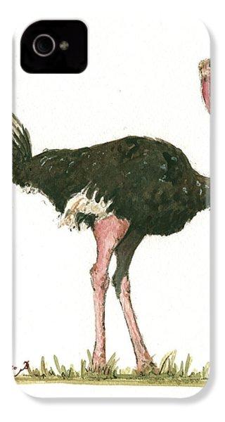 Ostrich Bird IPhone 4 / 4s Case by Juan Bosco