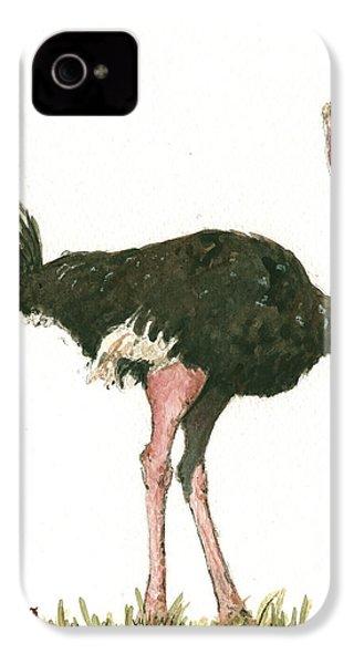Ostrich Bird IPhone 4 Case by Juan Bosco