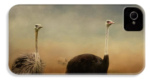 Ostrich Couple IPhone 4 Case by Jai Johnson