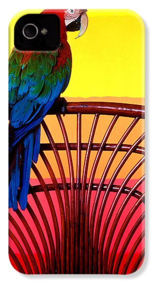 Parrot Sitting On Chair IPhone 4 Case by Garry Gay