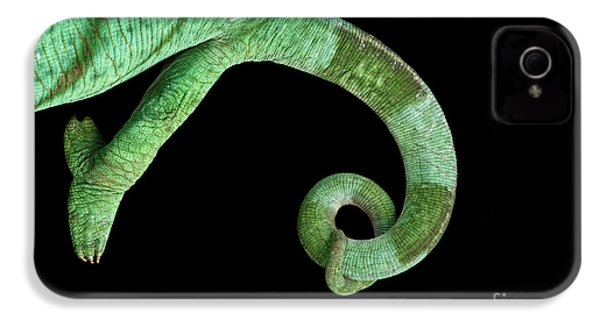 Parson Chameleon, Calumma Parsoni On Black Background, Top View IPhone 4 Case by Sergey Taran