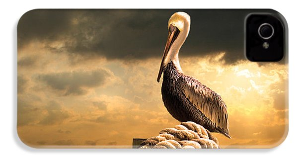 Pelican After A Storm IPhone 4 Case by Mal Bray