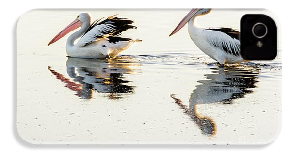 Pelicans At Dusk IPhone 4 Case by Werner Padarin