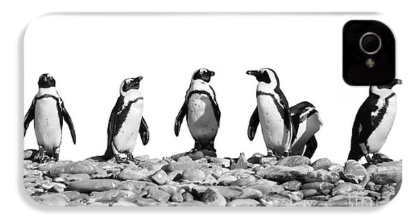 Penguins IPhone 4 / 4s Case by Delphimages Photo Creations