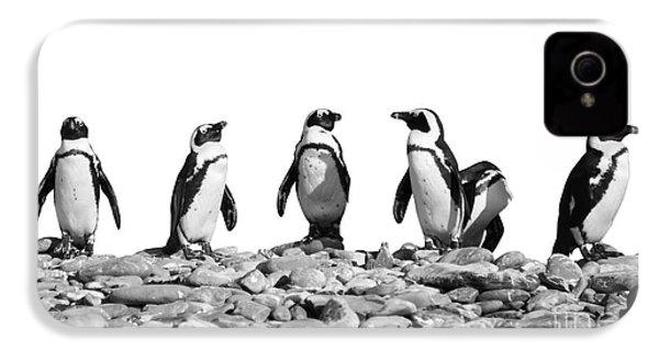 Penguins IPhone 4 Case by Delphimages Photo Creations