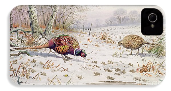 Pheasant And Partridge Eating  IPhone 4 / 4s Case by Carl Donner