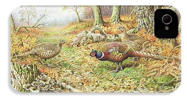 Pheasants With Blue Tits IPhone 4 Case by Carl Donner