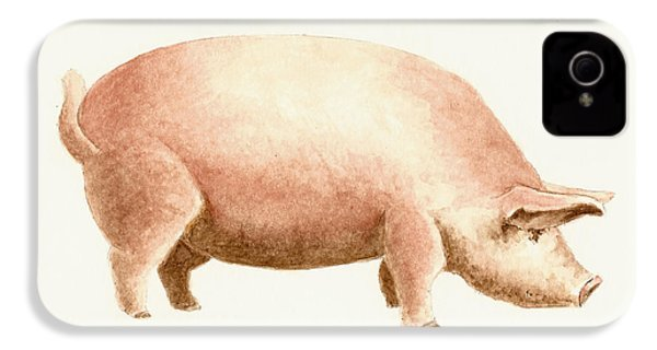 Pig IPhone 4 / 4s Case by Michael Vigliotti