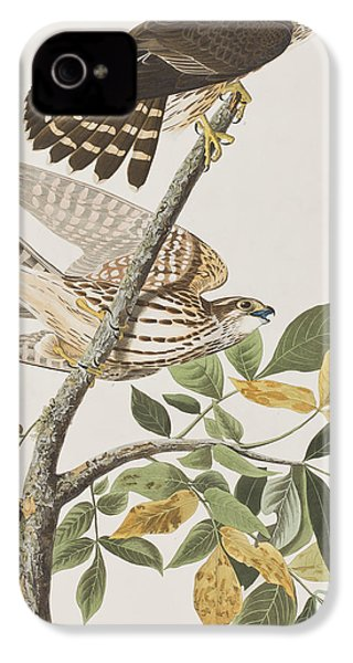 Pigeon Hawk IPhone 4 / 4s Case by John James Audubon