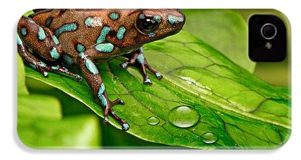 poison art frog Panama IPhone 4 Case by Dirk Ercken