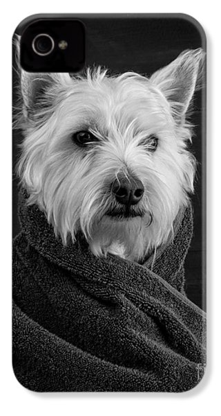 Portrait Of A Westie Dog IPhone 4 / 4s Case by Edward Fielding
