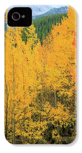 Pure Gold IPhone 4 Case by David Chandler