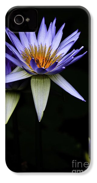 Purple Waterlily IPhone 4 Case by Avalon Fine Art Photography