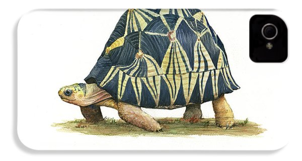 Radiated Tortoise  IPhone 4 Case by Juan Bosco